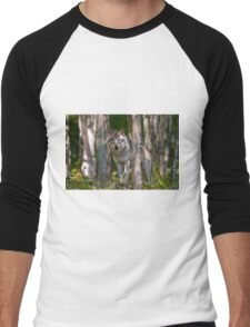 Timber wolf in Forest Men's Baseball ¾ T-Shirt