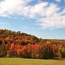 The Hills Around Punxsutawney by teresa731