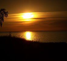 Sunset by Teresa Mizgala