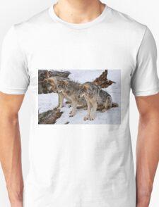 We three Kings.... T-Shirt