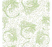 Green dill hand drawn illustration  Photographic Print