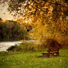 the bench by KathleenRinker