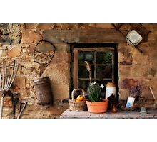 Country Comfort Photographic Print