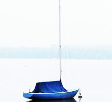 The Blue Boat by ColeCollection