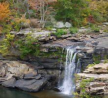 Little River Falls by Jacqueline Ison