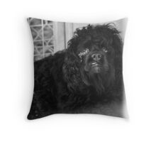 When Dogs Cry Throw Pillow