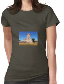 Woodspring Priory at Sunset Womens Fitted T-Shirt