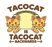 Tacocat by DetourShirts