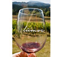 Lumos Winery Photographic Print