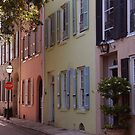 Pretty Lane in Charleston by Susanne Van Hulst