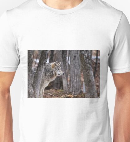 Timber Wolf in trees Unisex T-Shirt