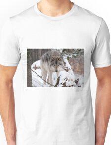 Patrolling  T-Shirt