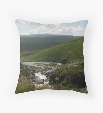 Teesdale Throw Pillow
