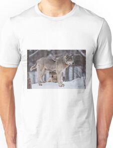 Site Seeing T-Shirt