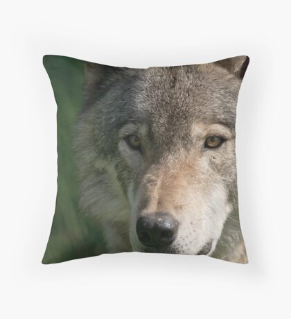 Timberwolf - Acrylic painting treatment in PS3 Throw Pillow