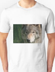 Timberwolf - Acrylic painting treatment in PS3 T-Shirt