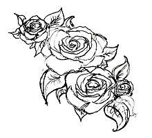 White Wedding Roses by hartzelldesign