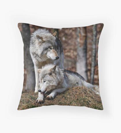 Alpha Pair Throw Pillow