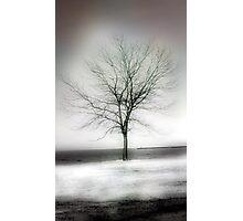 winter shore Photographic Print