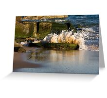 Little Explosion - Beachcomber Series Greeting Card