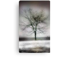 winter shore too Canvas Print