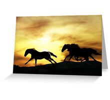 Wild Horses at Sunset Greeting Card