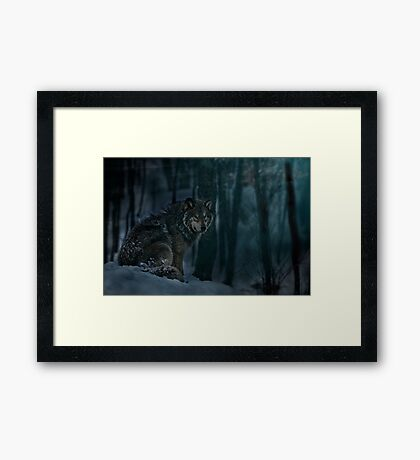 Timberwolf in Moonlight Framed Print