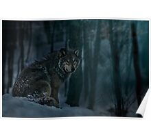 Timberwolf in Moonlight Poster