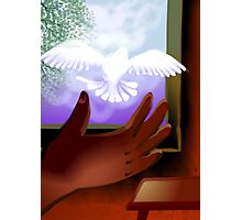 Eagerness of the pigeon Photographic Print