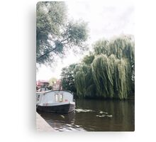 Water Willow Canvas Print
