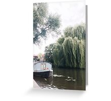 Water Willow Greeting Card