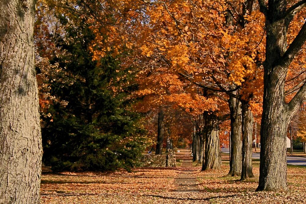 A Sidewalk in Fall by Geno Rugh