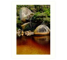 Tea Tree Stained Waters of Tidal River Art Print