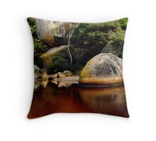 Tea Tree Stained Waters of Tidal River Throw Pillow