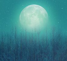 The Moon Shines Bright In Such A Night (Birch Moon) by soaringanchor
