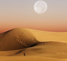 Full Moon over Mesquite Flat Sand Dunes  by Alex Preiss