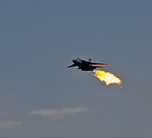 F111, My Tail's on Fire!  Dump and Burn by bazcelt
