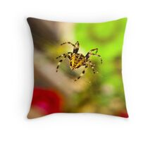 Spider Close-up Throw Pillow