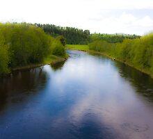 Fairy - tale  ...Bjora River... Nord Trondelag.  Norway .  Brown Sugar Story.2009. Favorites: 3 Views: 452 . Tight lines friends ! WooHoo! by © Andrzej Goszcz,M.D. Ph.D