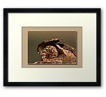 home sweat home Framed Print