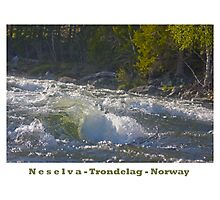 Water powers - Nesselva . Norway. Brown Sugar Story.Featured in Group Fishlike . Favorites: 1 Views: 324 . Thx! Photographic Print