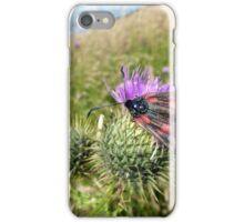 6-Spot Burnet Moth? iPhone Case/Skin