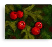Hawthorn Berries in Oil Pastel, Red and Green Canvas Print