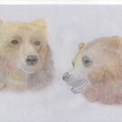 A pair of Bears by LadyE