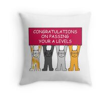 Congratulations on passing your A levels. Throw Pillow