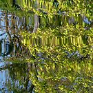 Rippled reflections by bubblehex08