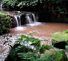 The Glen Waterfall,Kilsyth, Scotland, Taken August 22nd 2010 by Jim Wilson