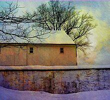 Winter Barn by Judi Taylor