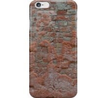 Brick wall structure iPhone Case/Skin