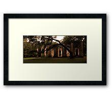 Old Sheldon Church 23 Framed Print